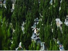 仙峰山墓园