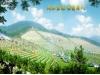 宝鸭山永久墓园